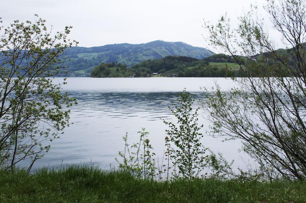 Gewässer-1