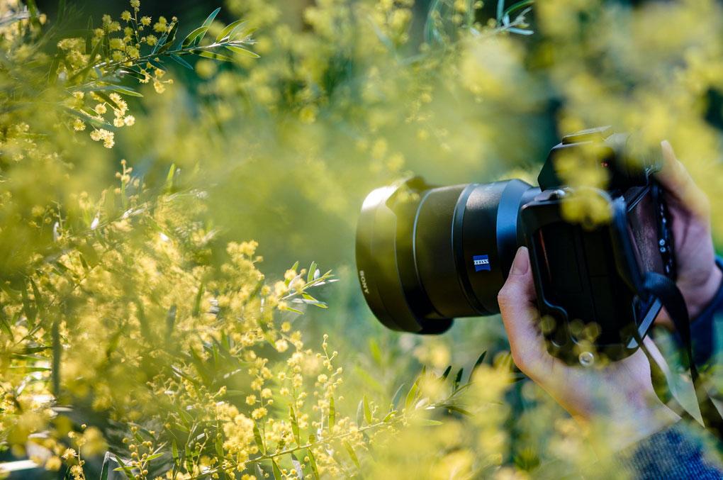 Spiegelreflexkameras-für-Einsteiger