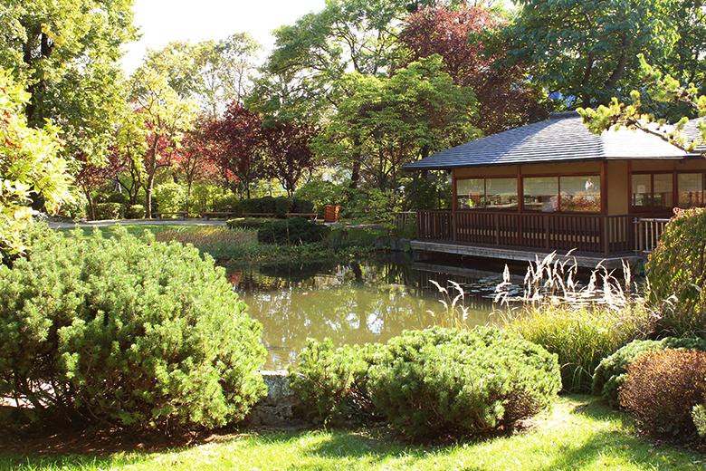 Wien-Setagaya-Park-Teehaus